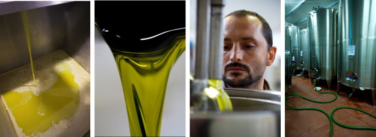 Decanted filtered olive oil is stored in tanks